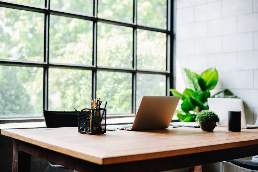 Pflanzen im Büro bringen positive Eigenschaften mit sich.