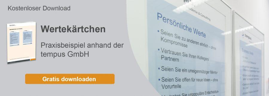 wertekaertchen-praxisbeispiel-vision-ziele-download